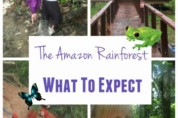 the Amazon rainforest trip where is tara irish travel blog