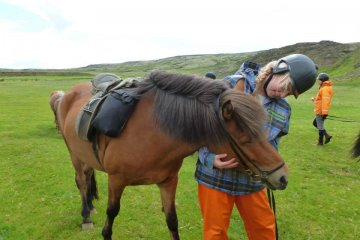things to do in Iceland horse riding in Iceland where is tara povey top Irish travel blogger