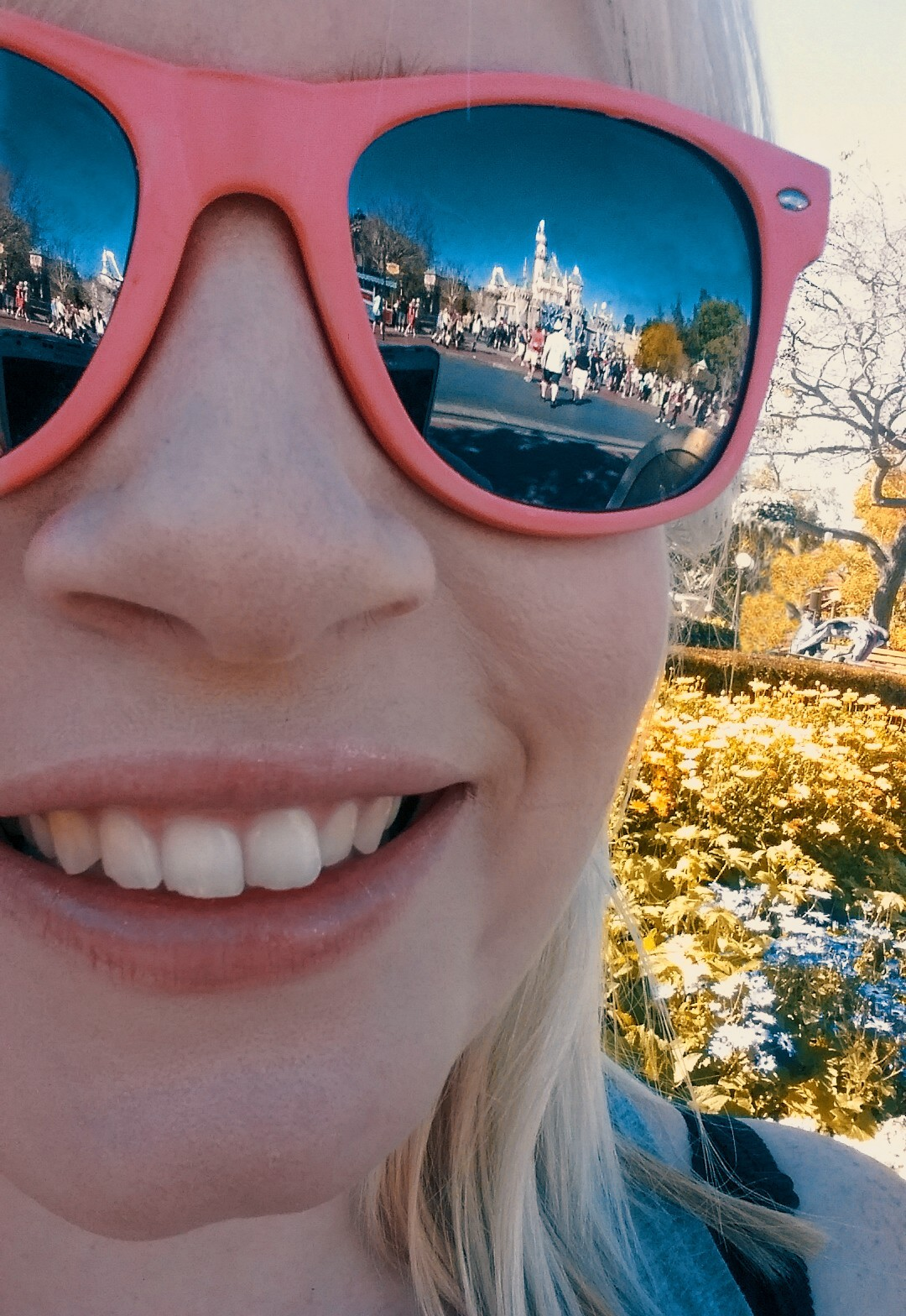 5 days in LA Los Angeles itinerary Disneyland