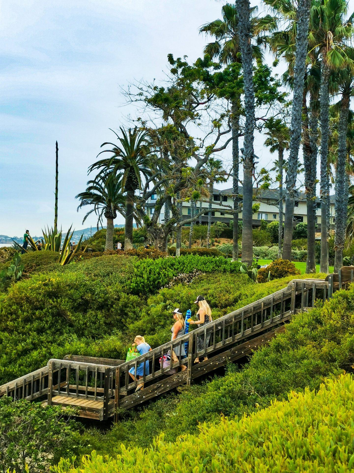 Laguna Beach Tara Povey 5 days in LA Los Angeles itinerary
